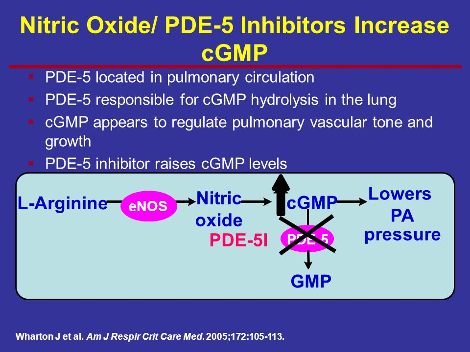 Nitric Oxide/ PDE-5 Inhibitors Increase cGMP