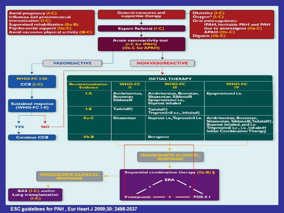 ESC guidelines for PAH , Eur Heart J 2009;30: 2498-2537