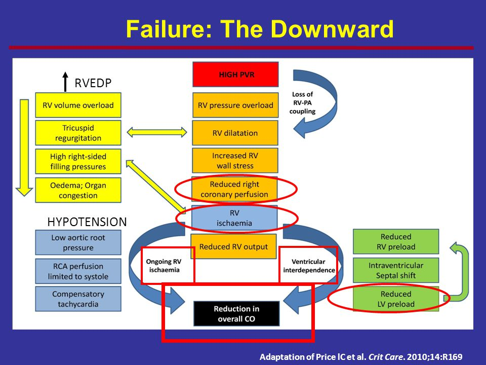 PH and RV Failure: The Downward Spiral