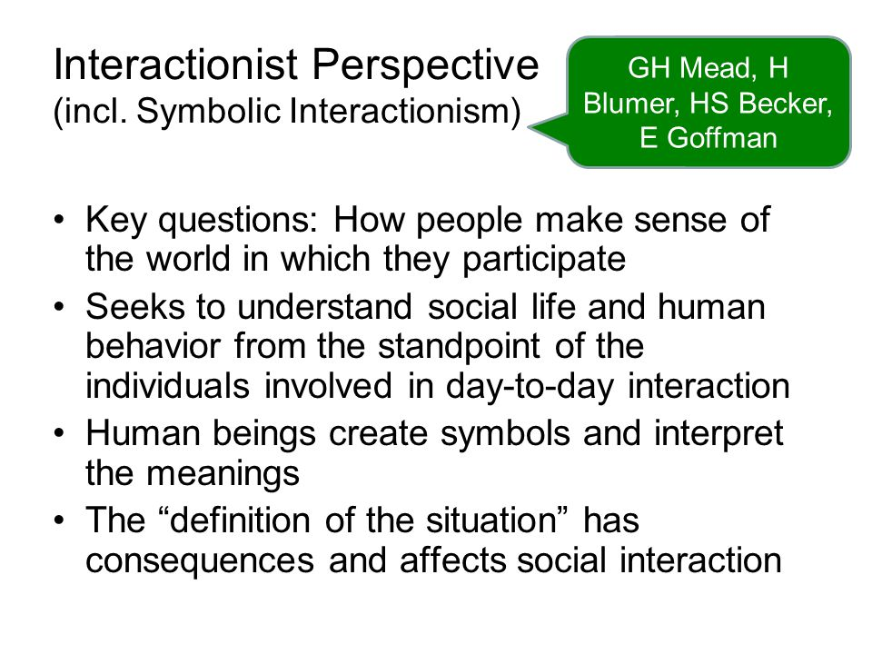 Interactionist Perspective (incl. Symbolic Interactionism)
