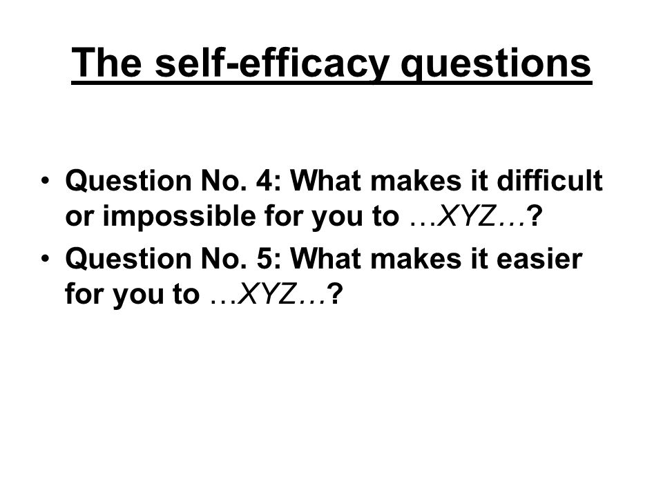 The self-efficacy questions