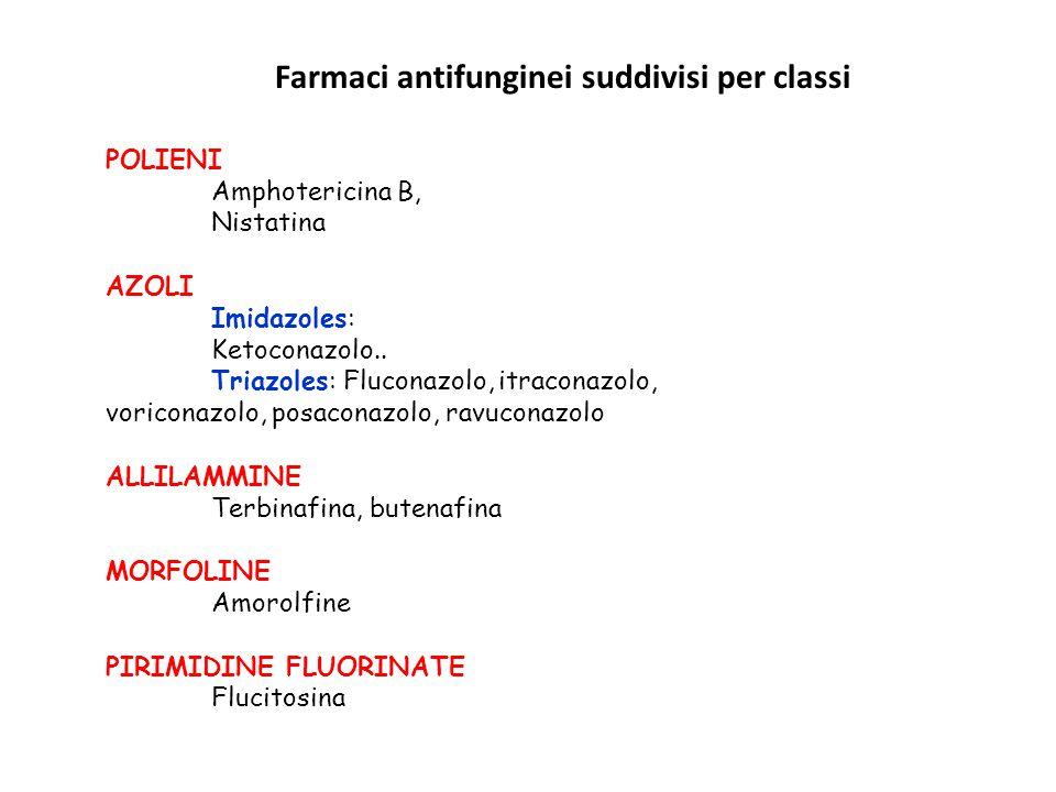 Farmaci antifunginei suddivisi per classi