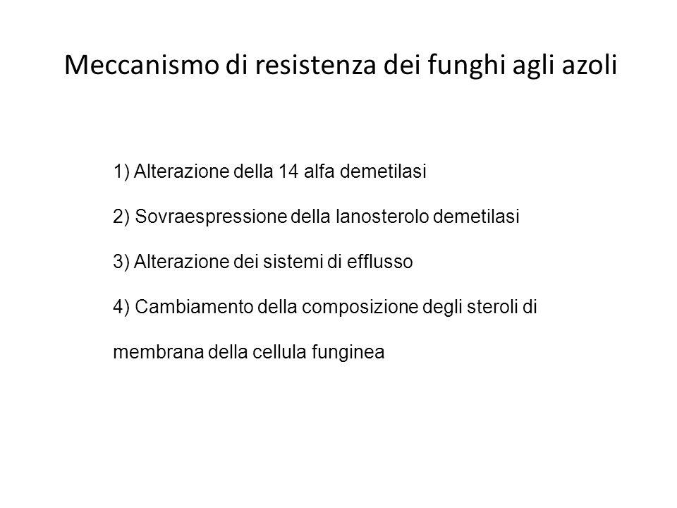Meccanismo di resistenza dei funghi agli azoli