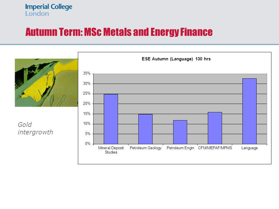 Autumn Term: MSc Metals and Energy Finance