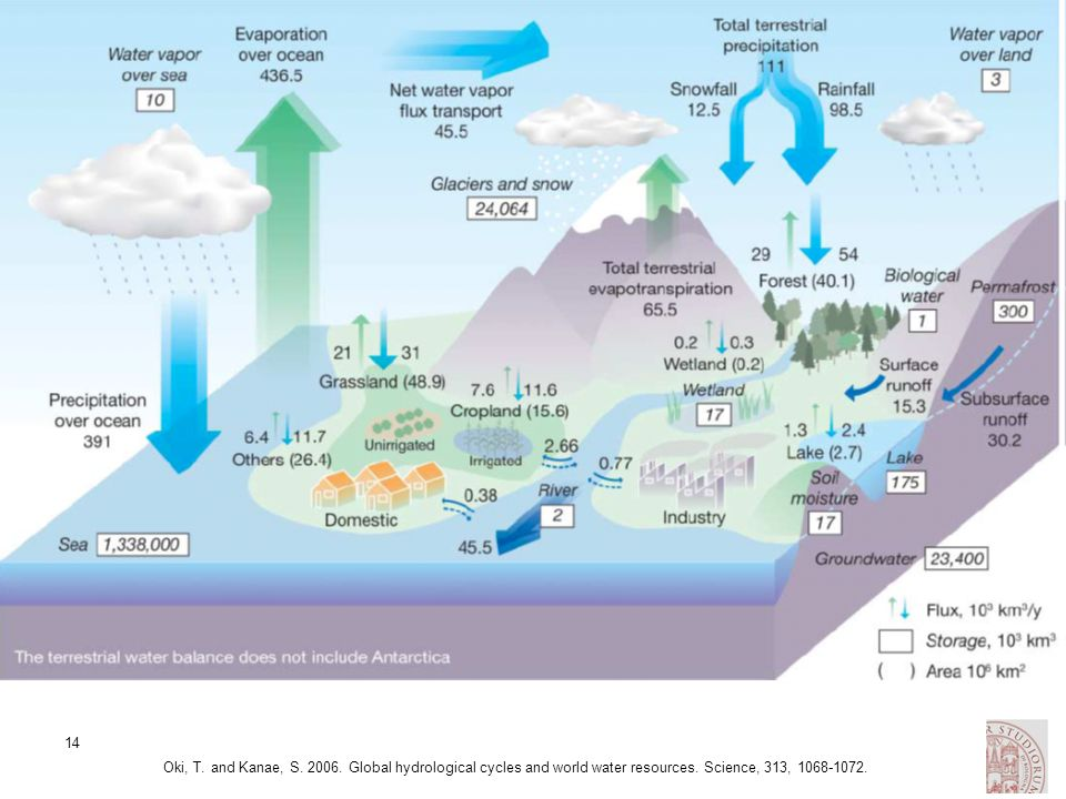 Oki, T. and Kanae, S. 2006. Global hydrological cycles and world water resources.