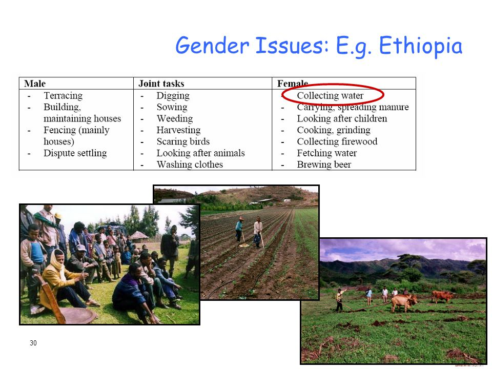 Gender Issues: E.g. Ethiopia