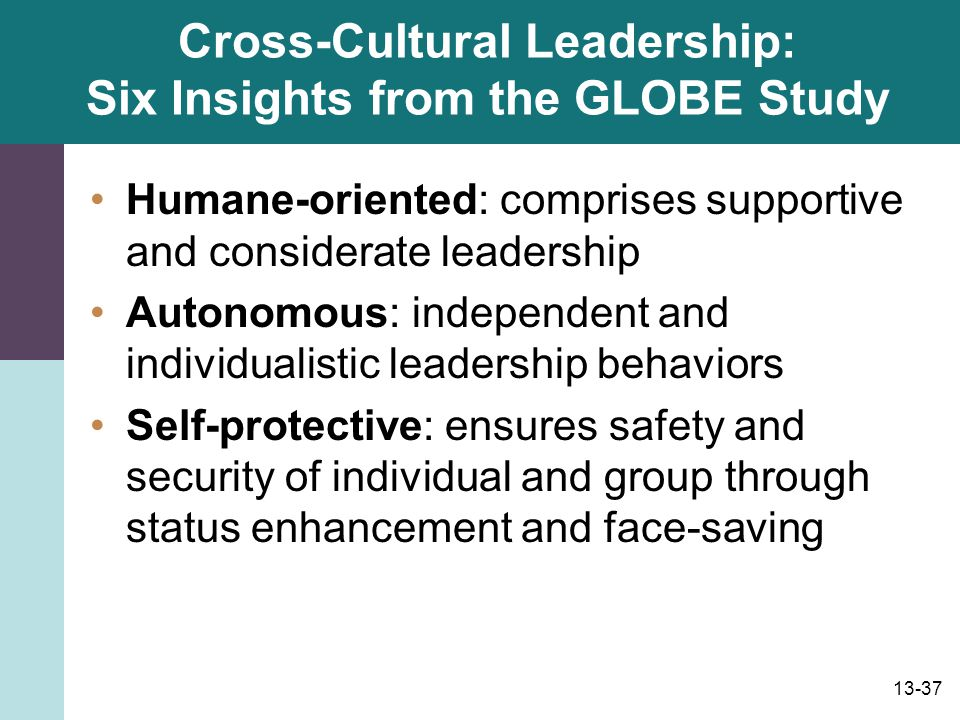 Cross-Cultural Leadership: Six Insights from the GLOBE Study