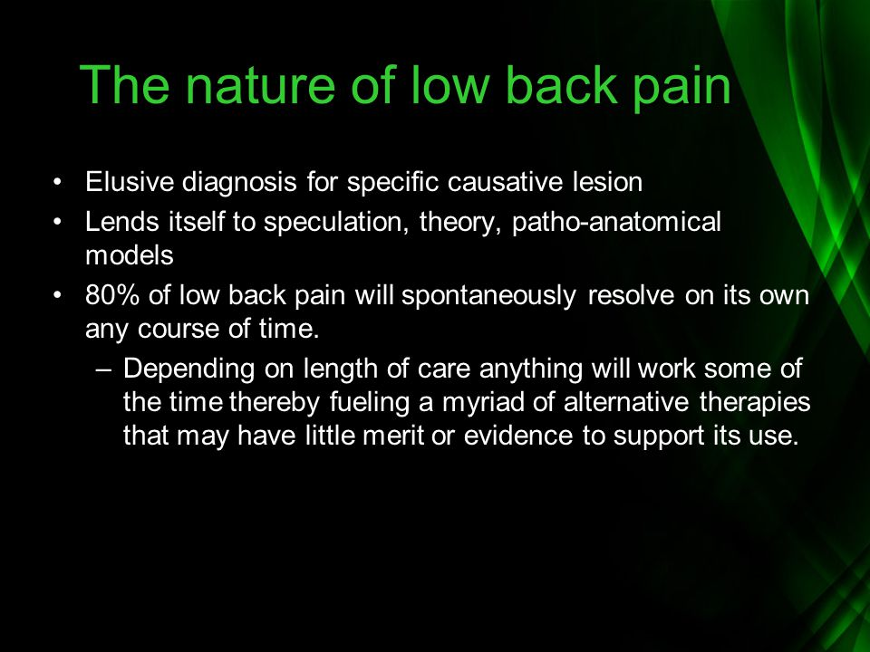 The nature of low back pain