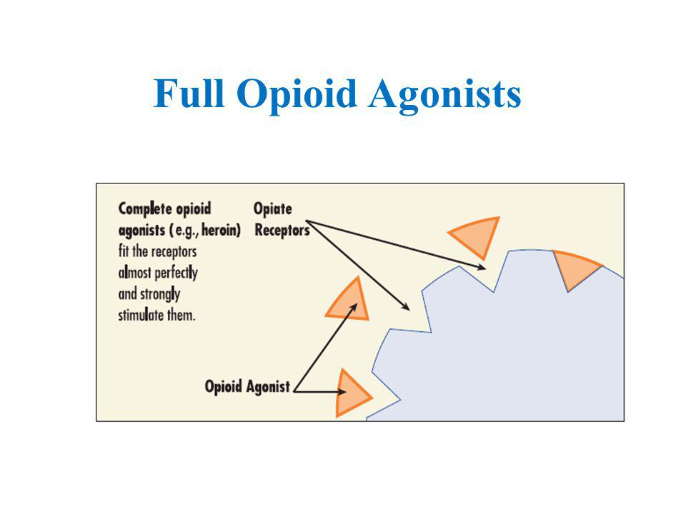 Full Opioid Agonists