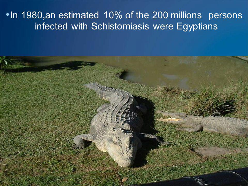 In 1980,an estimated 10% of the 200 millions persons infected with Schistomiasis were Egyptians