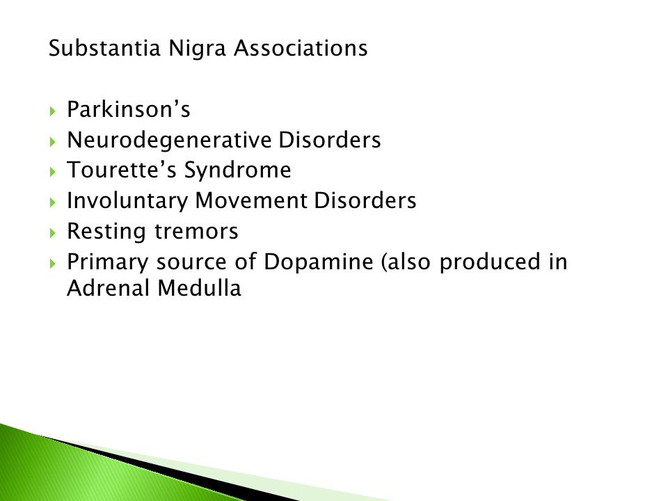 Substantia Nigra Associations