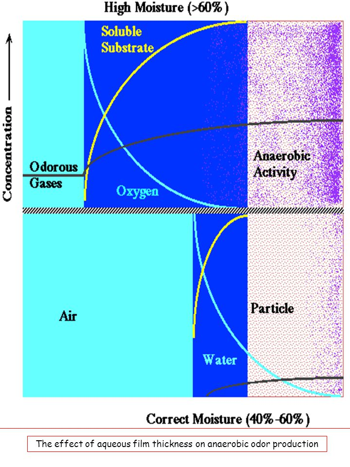 The effect of aqueous film thickness on anaerobic odor production