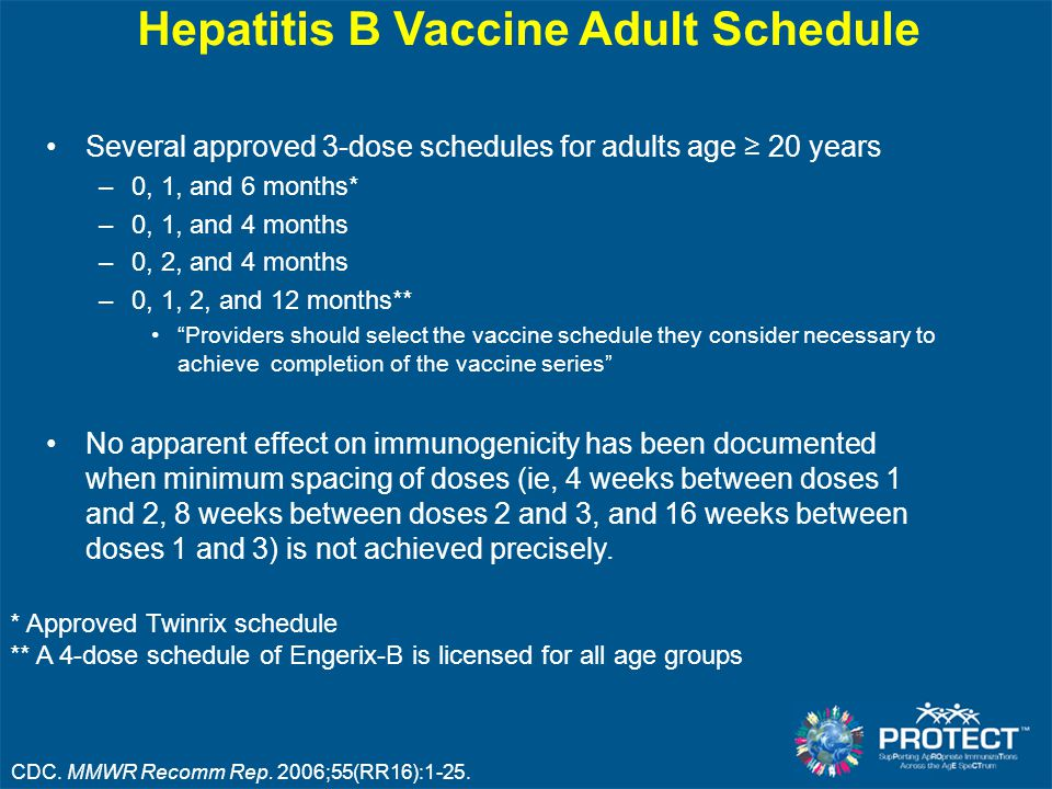 Hepatitis B Vaccine Adult Schedule