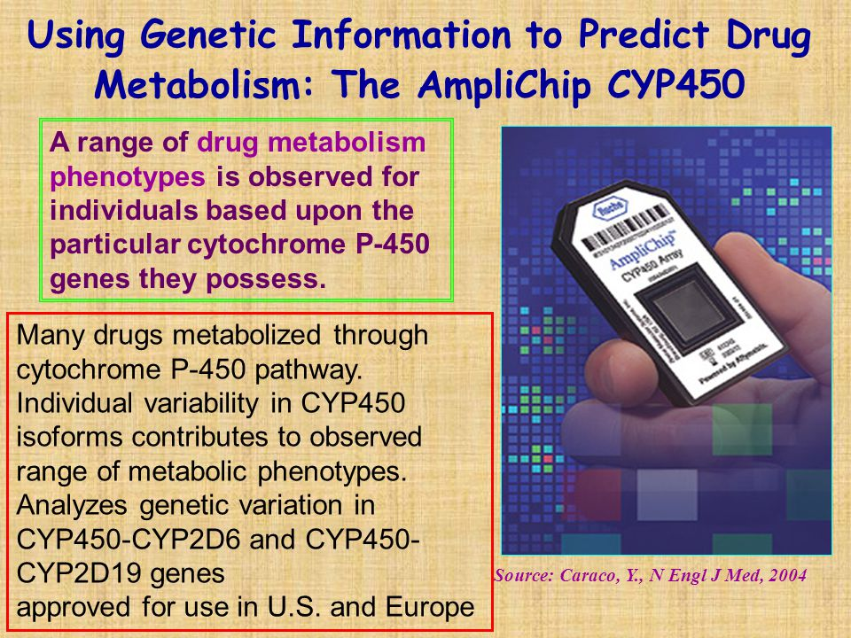 Using Genetic Information to Predict Drug Metabolism: The AmpliChip CYP450