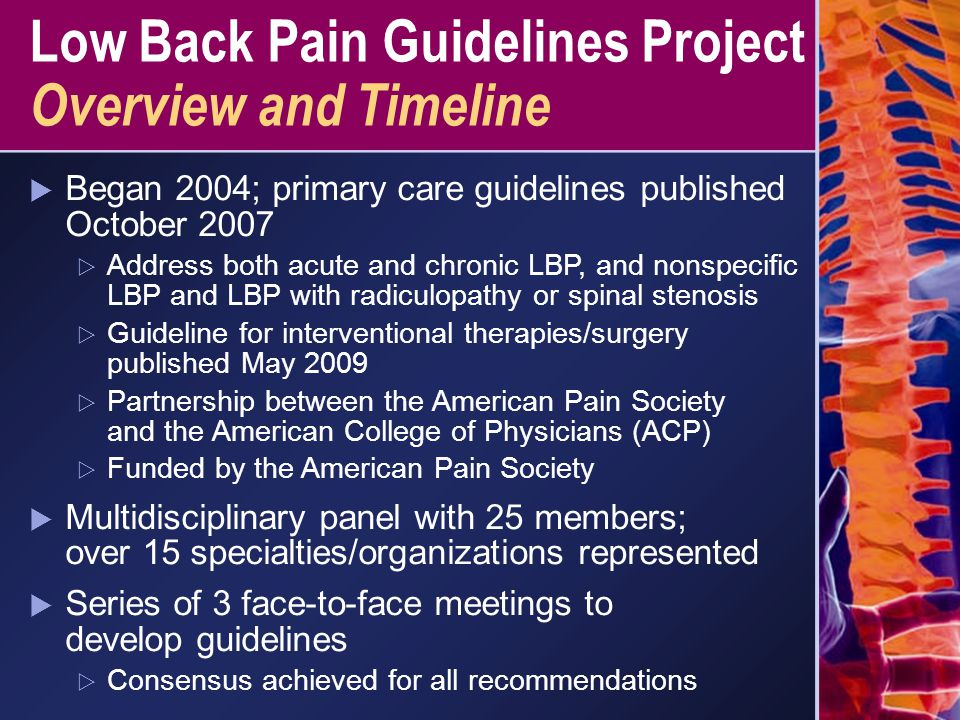Low Back Pain Guidelines Project Overview and Timeline