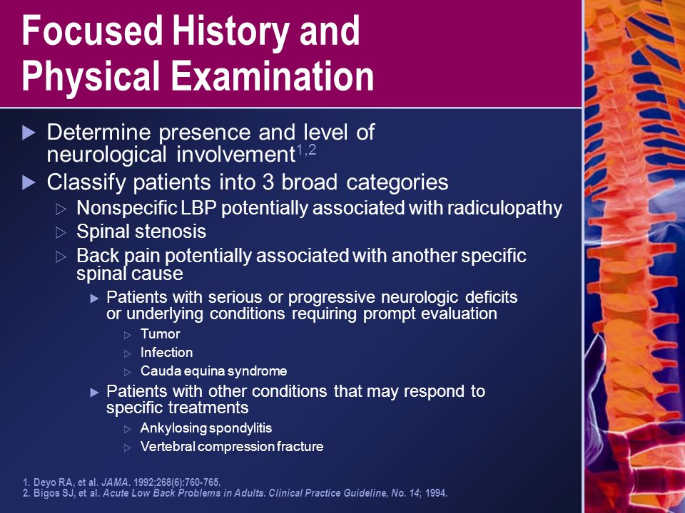 Focused History and Physical Examination