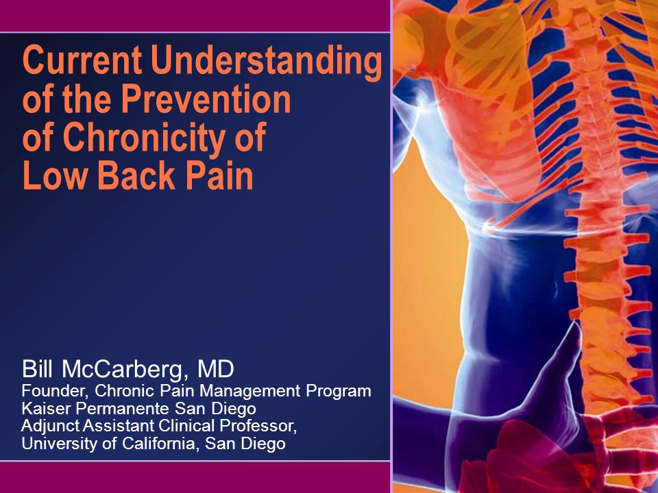 Current Understanding of the Prevention of Chronicity of Low Back Pain