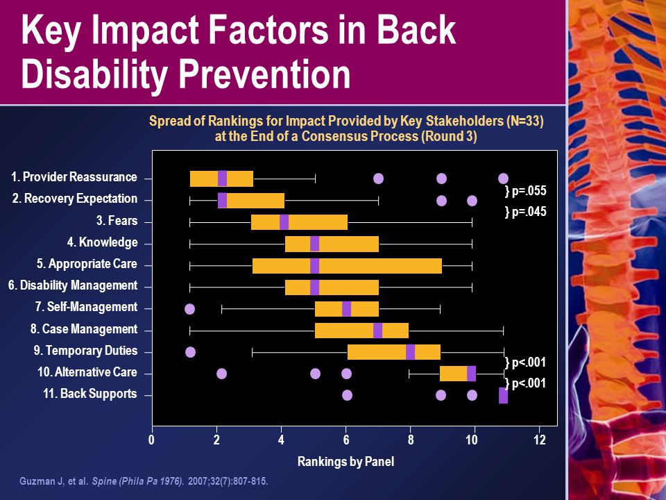 Key Impact Factors in Back Disability Prevention