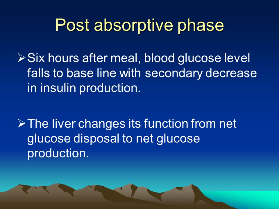 Post absorptive phase Six hours after meal, blood glucose level falls to base line with secondary decrease in insulin production.
