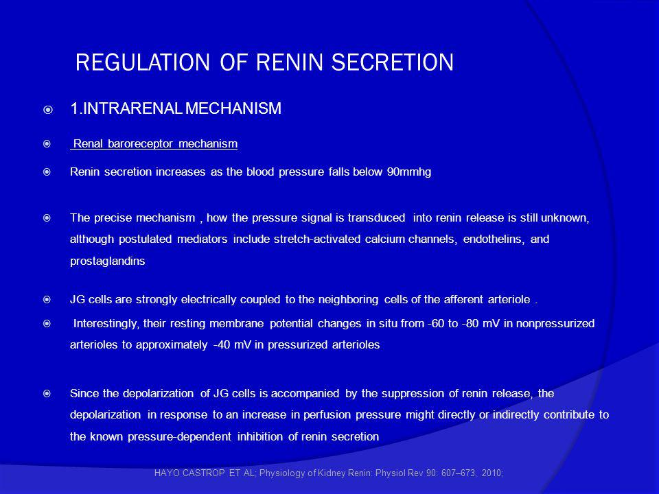 REGULATION OF RENIN SECRETION