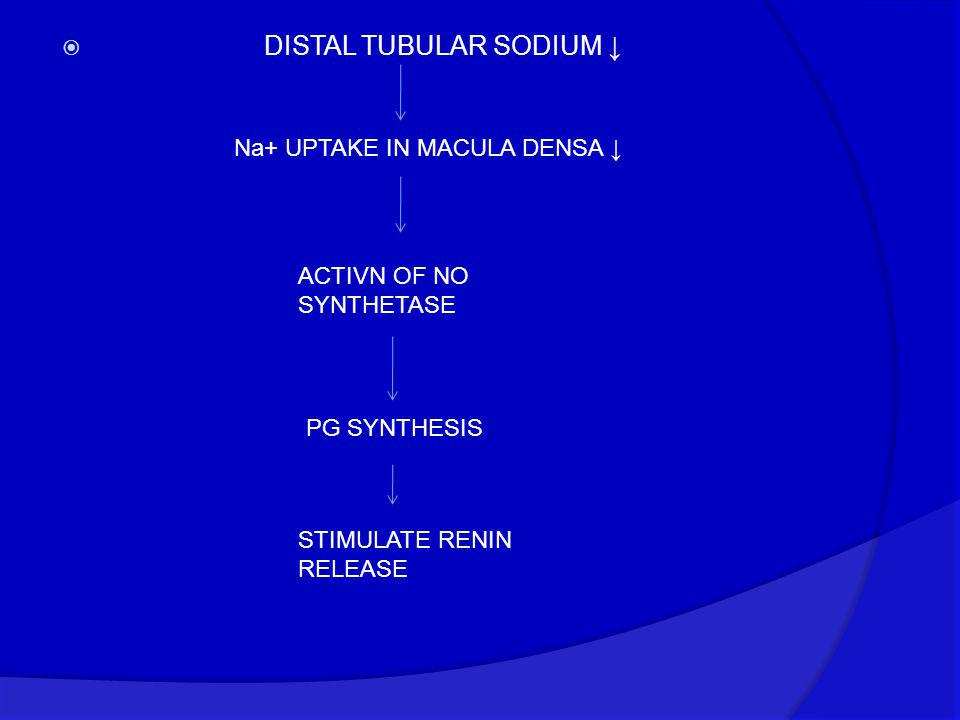 DISTAL TUBULAR SODIUM ↓