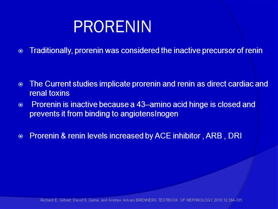 PRORENIN Traditionally, prorenin was considered the inactive precursor of renin.