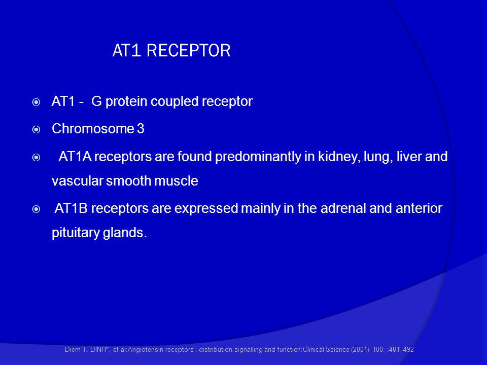 AT1 RECEPTOR AT1 - G protein coupled receptor Chromosome 3