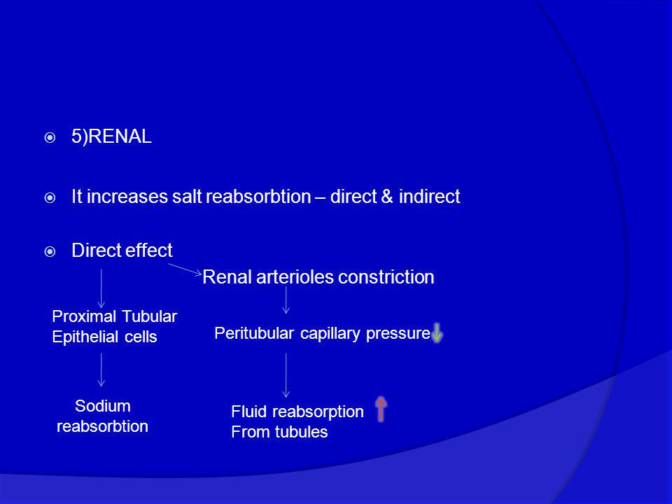 It increases salt reabsorbtion – direct & indirect Direct effect