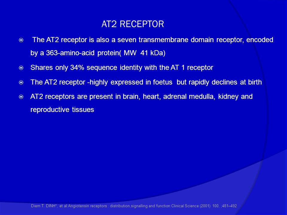 AT2 RECEPTOR The AT2 receptor is also a seven transmembrane domain receptor, encoded by a 363-amino-acid protein( MW 41 kDa)