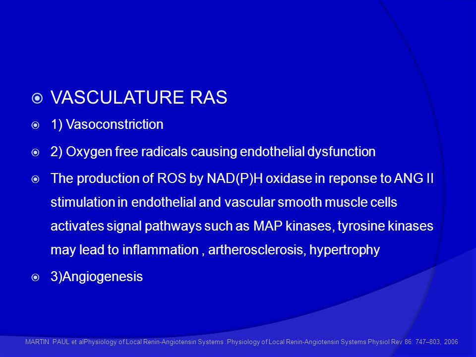 VASCULATURE RAS 1) Vasoconstriction