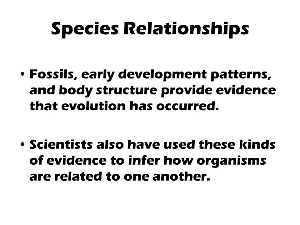 Species Relationships