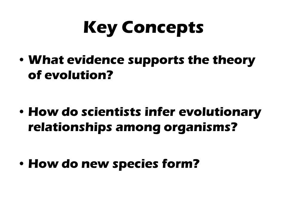 Key Concepts What evidence supports the theory of evolution