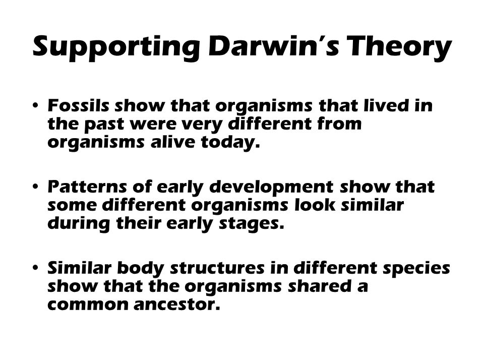 Supporting Darwin's Theory