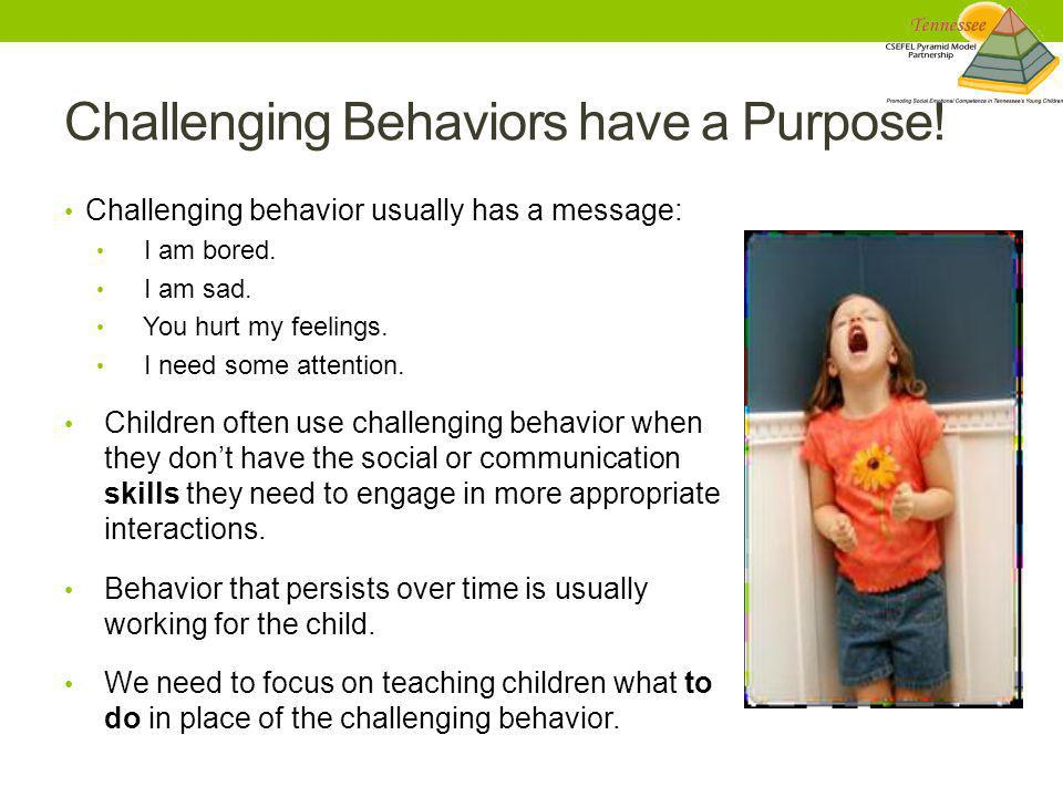 Challenging Behaviors have a Purpose!