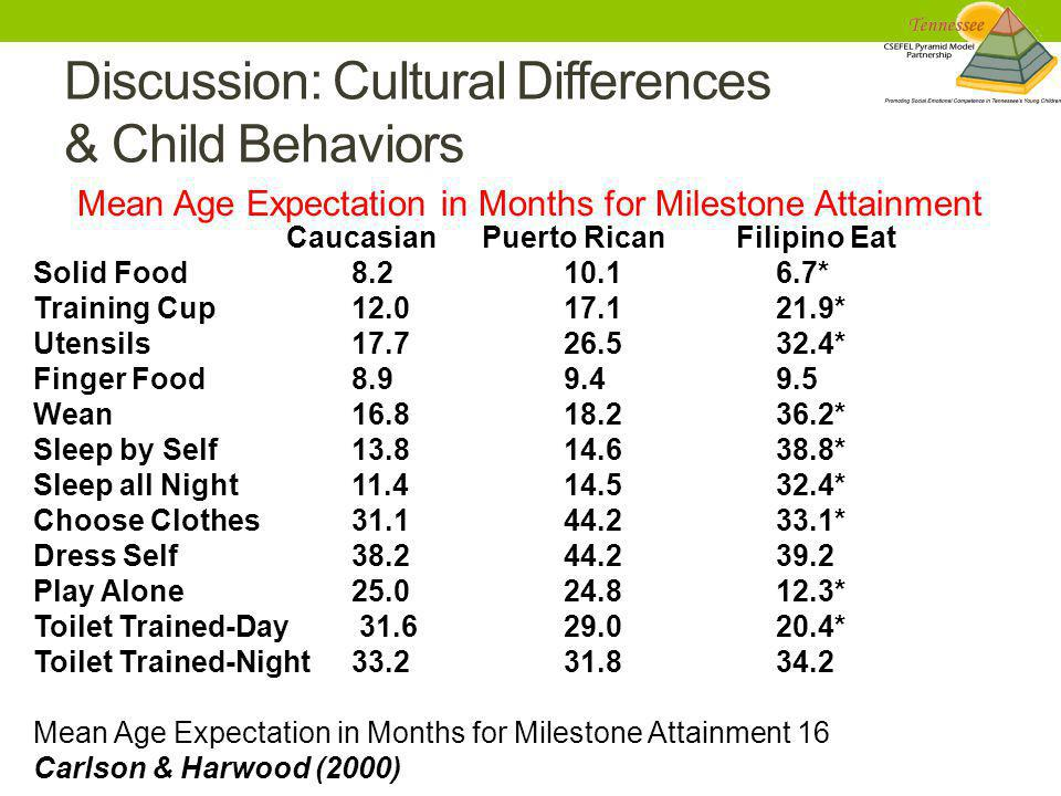 Discussion: Cultural Differences & Child Behaviors