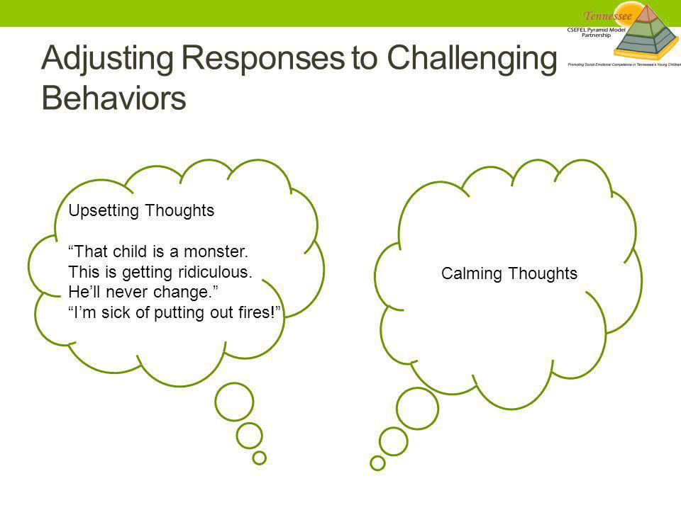 Adjusting Responses to Challenging Behaviors