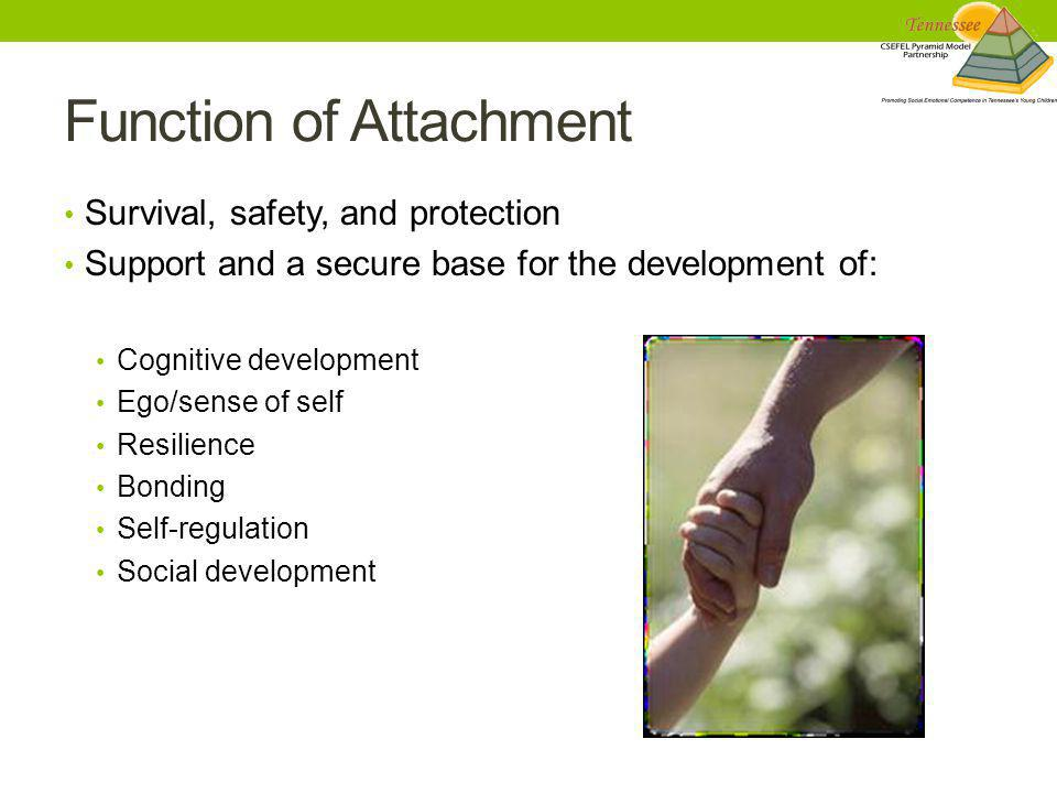 Function of Attachment