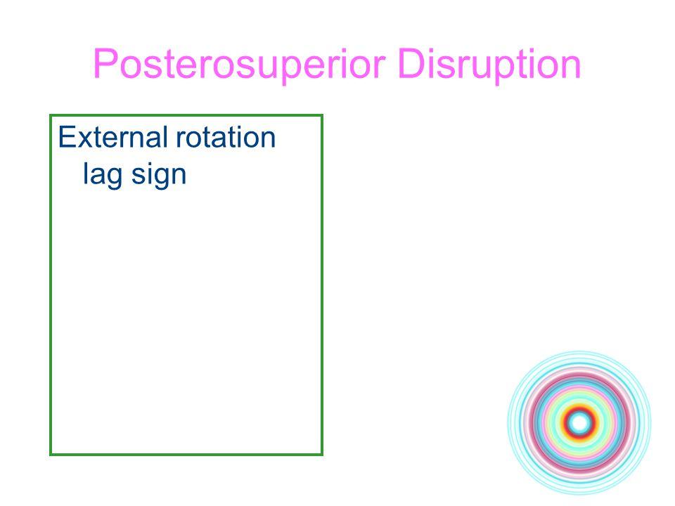 Posterosuperior Disruption