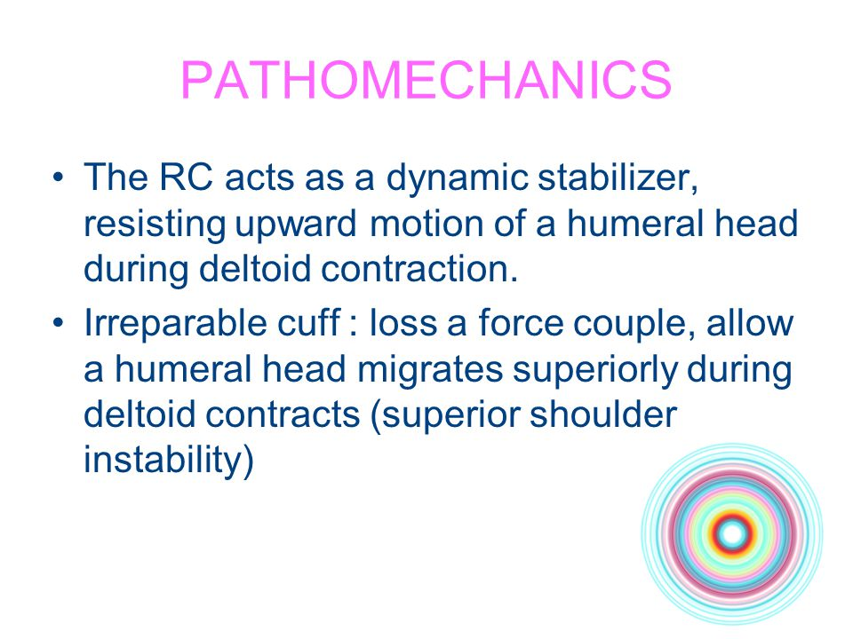 PATHOMECHANICS The RC acts as a dynamic stabilizer, resisting upward motion of a humeral head during deltoid contraction.