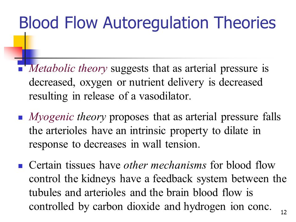Blood Flow Autoregulation Theories