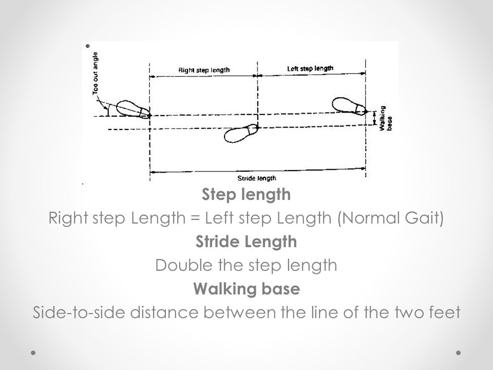 Step length Stride Length Walking base