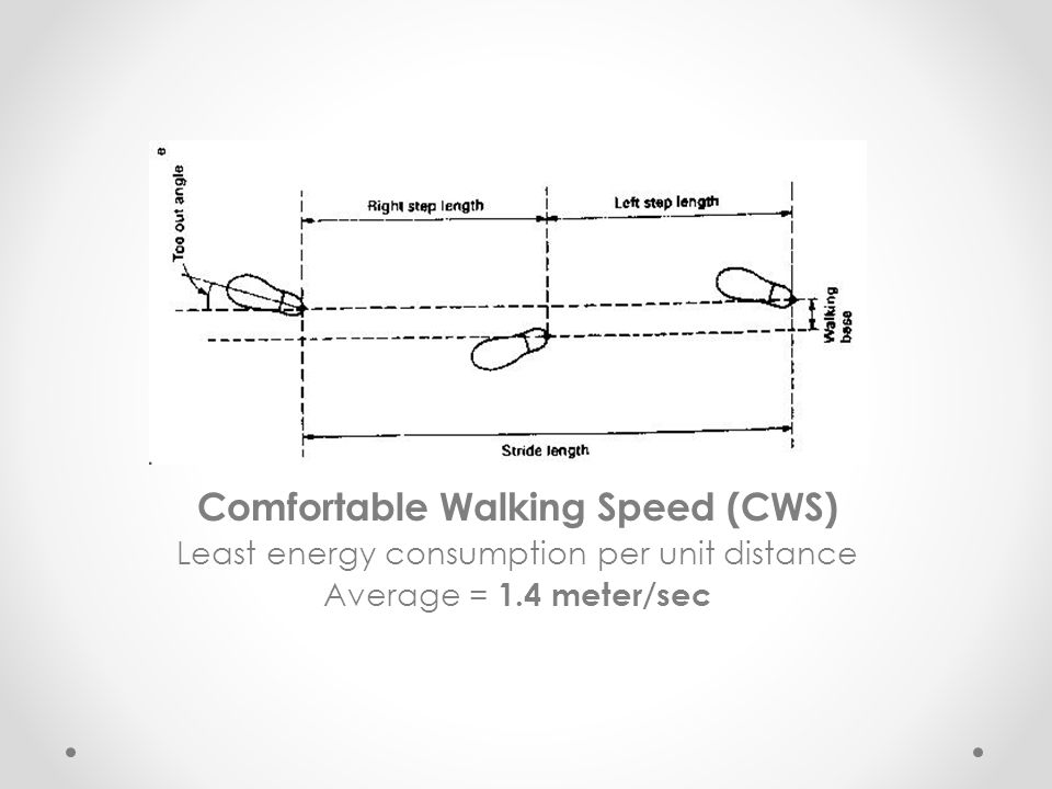 Comfortable Walking Speed (CWS)