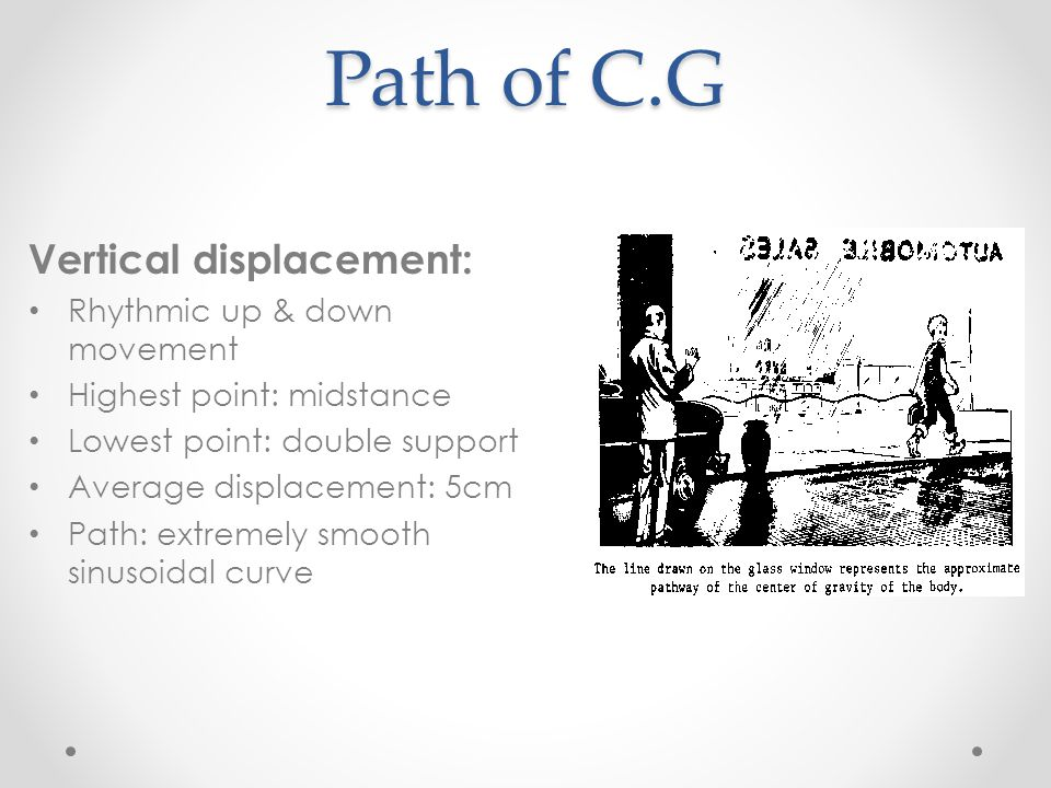 Path of C.G Vertical displacement: Rhythmic up & down movement