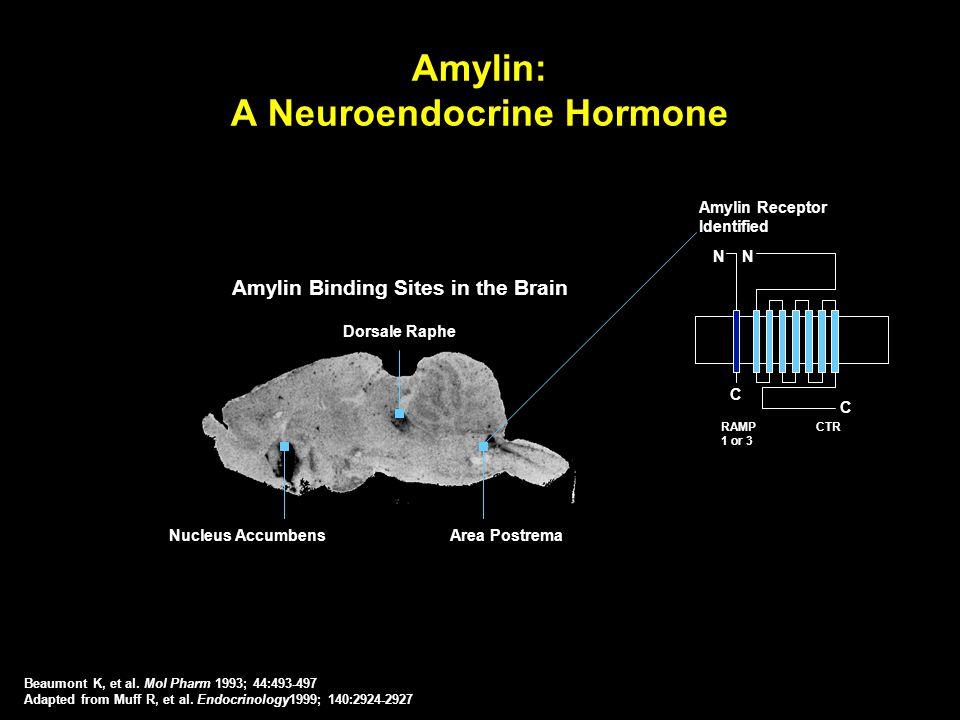Amylin: A Neuroendocrine Hormone