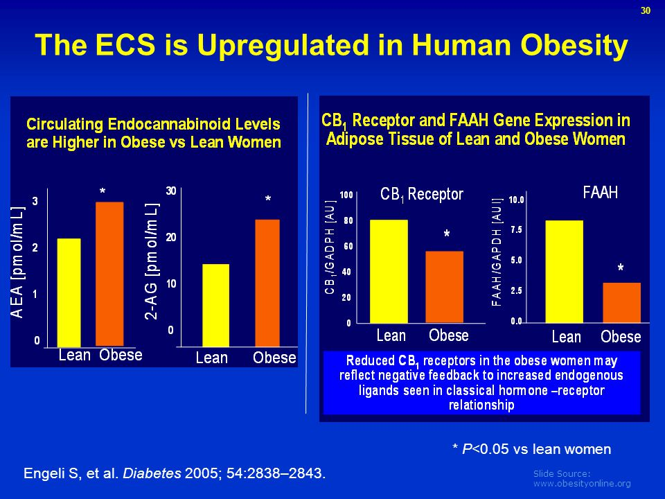 The ECS is Upregulated in Human Obesity