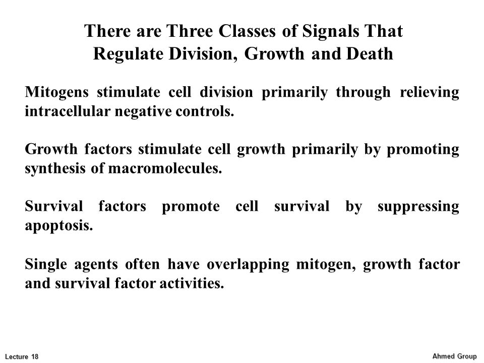 There are Three Classes of Signals That Regulate Division, Growth and Death