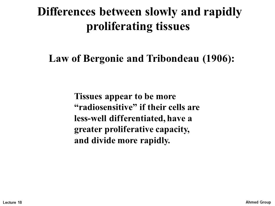 Differences between slowly and rapidly proliferating tissues