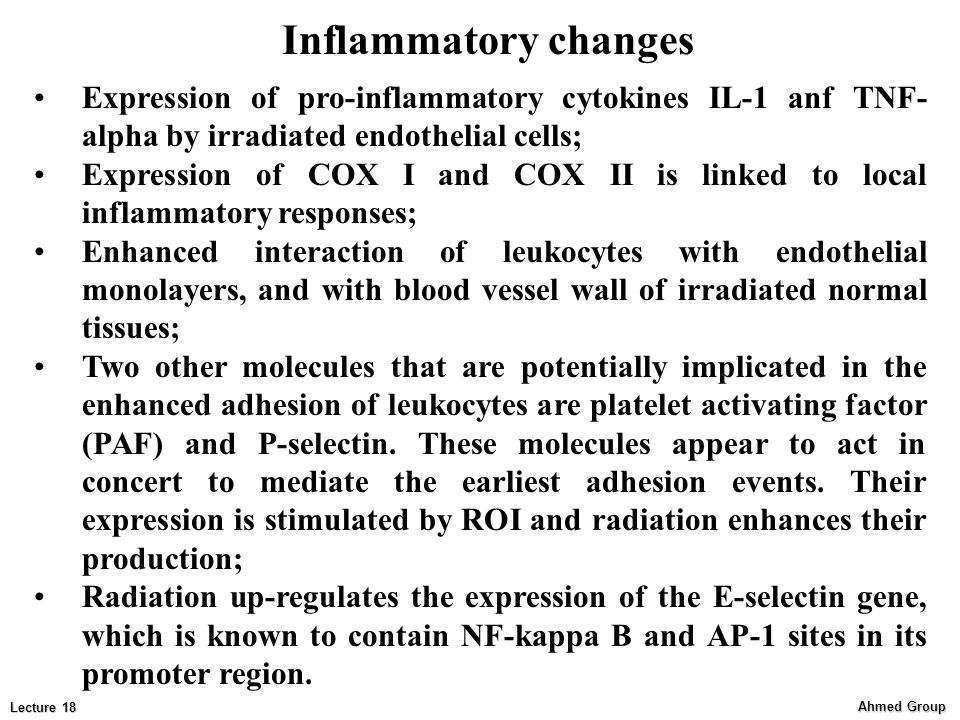 Inflammatory changes Expression of pro-inflammatory cytokines IL-1 anf TNF-alpha by irradiated endothelial cells;
