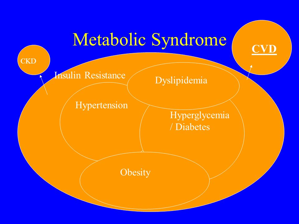 Metabolic Syndrome CVD Insulin Resistance Dyslipidemia Hypertension