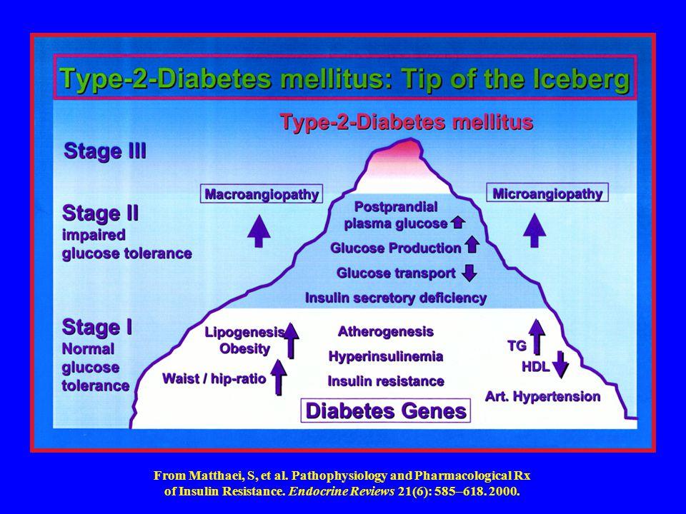 pathophysiology of insulin resistance pdf